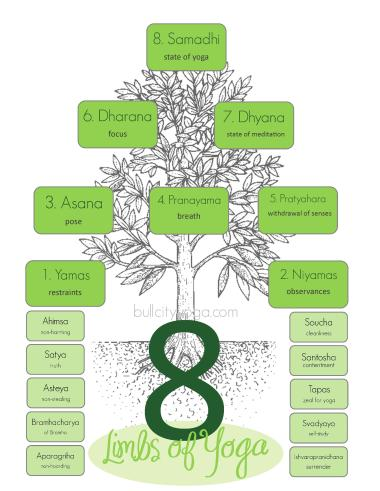 8-limbs-of-yogathe-eight-limbs-of-yoga---yog-sundari-ulkup29d
